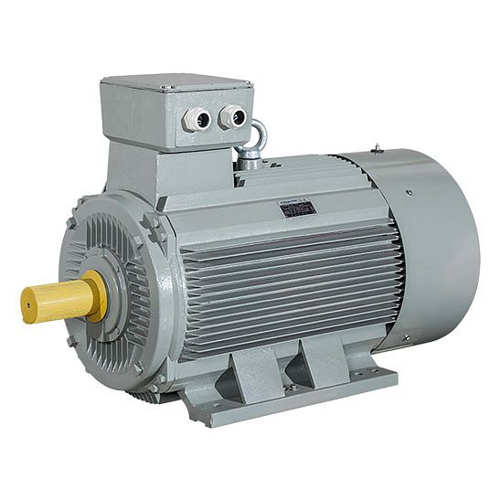 AC MOTOREN Electric Motors